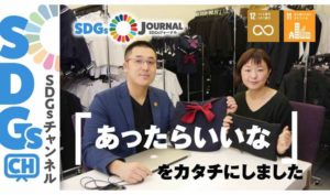 SDGs 目標11 17項目